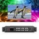Scaler processore Ledwall HDMI KS600